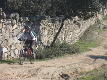 Ruta en bici rodeando el Soto de Viñuelas